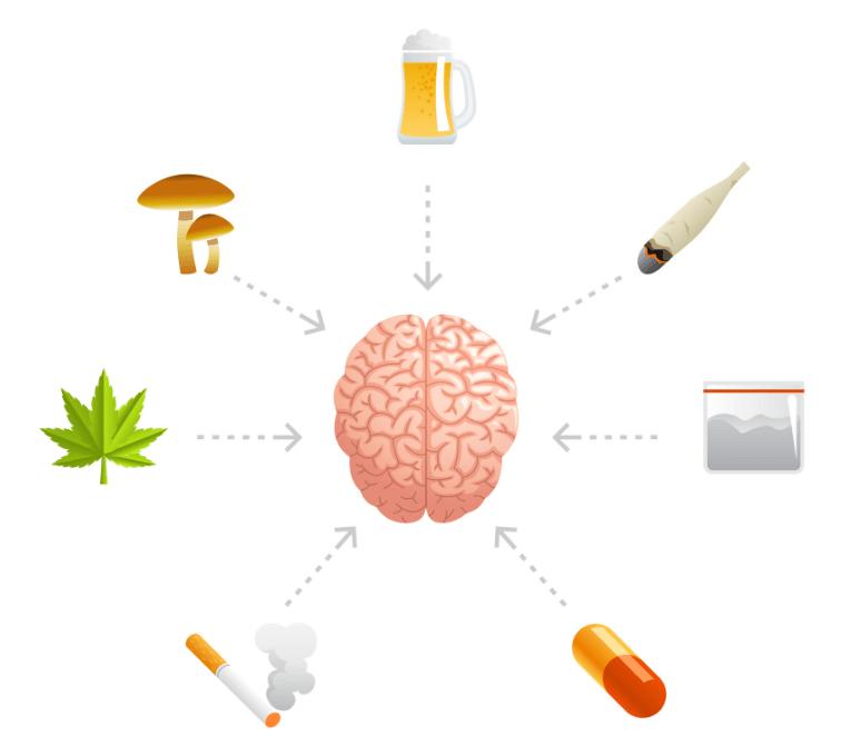 efecto de drogas en cerebro