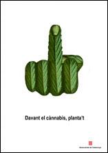 Cartel finalista, 'Ante el cannabis, plántate'