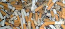tabacovacuna - Una vacuna contra el tabaco
